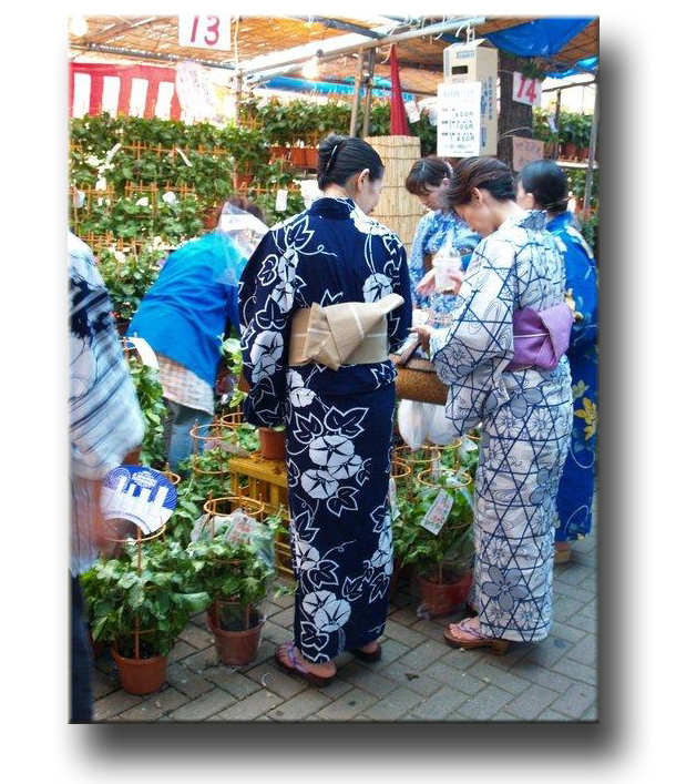 small group tours of Japan